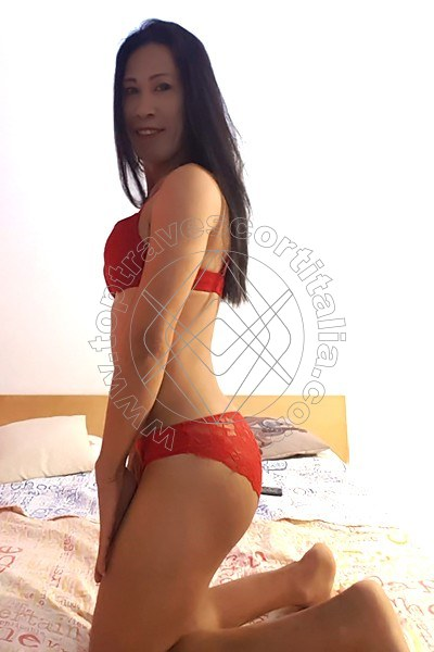 Paloma LIVORNO 3511580651